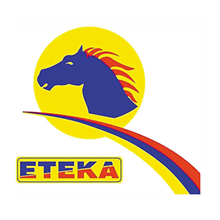 ETEKA_logo220